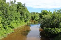 Rivière Blanche (pegase1972) Tags: rivière river becancour québec qc canada tree licensed shutter summer nature
