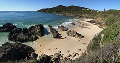 South Burgess Beach, Forster, NSW (Black Diamond Images) Tags: burgessbeach forster greatlakesnsw nsw midnorth greatlakes australianbeaches beach beachlandscapes landscape coast iphone appleiphone7plus iphone7plus panorama appleiphone7pluspanorama iphone7pluspanorama iphonepanorama midnorthcoast capehawke