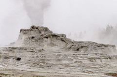 Castle Geyser (rschnaible) Tags: yellowstone national park us usa wyoming outdoor landscape geyser hot spring castle