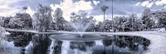 Infrarred Bogota botanical garden_panoramic (Luis FrancoR) Tags: infraredview infrared infrarrojo botanicgarden garden jardinbotanicobogota ir jardin nikon nikonflickraward luisfrancor
