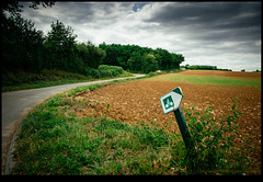 170624-2523-XM1.jpg (hopeless128) Tags: trees 2017 road roadsign fields sky eurotrip bike france clouds vieuxruffec nouvelleaquitaine fr