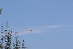 UP3A4784 (ken1_japan) Tags: 大阪国際空港 伊丹空港 itm 伊丹スカイパーク スカイランドハラダ japan osaka airplane ana jal canon 7dmkⅱ ef70200mm f28lisiiusm