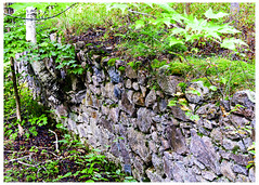 Yesteryear's Wall (swanksalot) Tags: townshipofmachar machartownship wall abandoned stone ontario frostpocket southriver birch maple tweeted