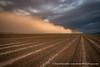 Haboob (David Swindler (ActionPhotoTours.com)) Tags: haboob dust storm duststorm arizona field clouds stormy
