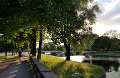A beautiful evening. (mala singh) Tags: evening amsterdam netherlands europe trees light shadows