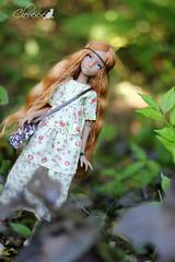 IMG_8233 (Cleo6666) Tags: lana lillycat cerisedolls marron glacé bjd doll chibbi