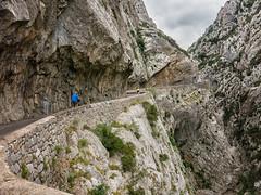 biking deep gorge road (maryannenelson) Tags: france gorge rocks view cliff dropoff landscape wall bikers