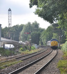 Approaching Brundall (James Passant) Tags: trains trainspotting class 37 diesel locomotive 37422 37405 brundall rail train station anglia tractors drs direct services short set 2p32 norwich great yarmouth