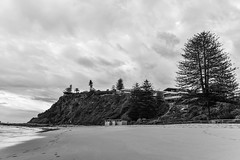 Newport Beach Headland (Merrillie) Tags: daybreak sand landscape nature water newsouthwales rocks nsw australia beach scenery monochrome trees headland clouds newport earlymornings waterscape sea blackandwhite dawn seascape