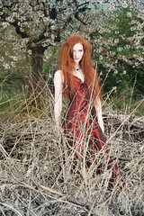 Red Witch (mondenkind.artist) Tags: redhead redhair ginger longhair mondenkind ingogans photography witch