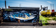 Fish mural (TD2112) Tags: tonyduke hastings mural graffitti fish fisherman fishingboat spraypaint