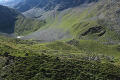 vallon de Barneuza, Val d'Anniviers (bulbocode909) Tags: valais suisse zinal valdanniviers vallondebarneuza montagnes nature vert