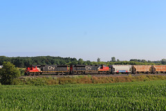 On Short Hours (view2share) Tags: cn5446 cn8855 emd electromotivedivision engine westbound westernwisconsin newrichmond stcroixcounty sd60 sd70m2 l517 cnl517 517 cn517 mainline wisconsin wi canadiannational july232017 july2017 july 2017 field corn hoppercar hopper coveredhopper coveredhoppercar morning track trains transportation tracks train transport trackage trees freight freighttrain freightcar freightcars railway railroading rr rring rrcar railroads rail rails railroad railroaders summer