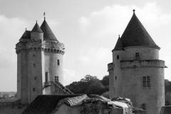 Château de Blandy-les-Tours (Philippe_28) Tags: blandylestours 77 seineetmarne iledefrance france europe château castle yashica electro 35 gs rangefinder télémétrique 24x36 argentique analogue camera photo caffenol