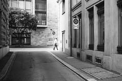 close to the center of power (gato-gato-gato) Tags: 35mm asph ch iso100 ilford ls600 leica leicamp leicasummiluxm35mmf14 mp messsucher noritsu noritsuls600 schweiz strasse street streetphotographer streetphotography streettogs suisse summilux svizzera switzerland wetzlar zueri zuerich zurigo z¸rich analog analogphotography aspherical believeinfilm black classic film filmisnotdead filmphotography flickr gatogatogato gatogatogatoch homedeveloped manual mechanicalperfection rangefinder streetphoto streetpic tobiasgaulkech white wwwgatogatogatoch zürich manualfocus manuellerfokus manualmode schwarz weiss bw blanco negro monochrom monochrome blanc noir strase onthestreets mensch person human pedestrian fussgänger fusgänger passant