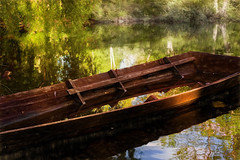 Come follow me if you dare.. (BirgittaSjostedt_away until 24 Febrtuary) Tags: boat rowingboat wood handmade old water waterfilled nature lake forestlake bay sunglint sun reflection dusk evening birgittasjostedt magicunicornverybest ie