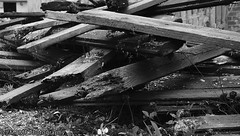 Wood. ((c) MAMF photography.) Tags: art arty artistic artwork britain blackwhite blackandwhite bw biancoenero candid d7100 dark blancoynegro blanco blancoenero enblancoynegro ennoiretblanc flickrcom flickr google googleimages greatbritain greatphotographers greatphoto image inbiancoenero images interesting ls27 mamfphotography mamf monochrome nikon nikond7100 noiretblanc noir old photography photo pretoebranco photograph photographer schwarzundweis schwarz wood zwartenwit zwartwit zwart