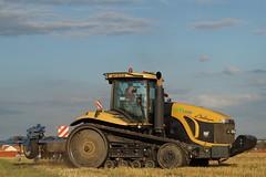 Cat Challenger MT 8758 (Baumi der Fotomann) Tags: cat raubentraktor gruppern feld erntezeit ernte felder landmaschienen ichtershausen ilmkreis