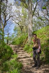 Hareshaw Linn, Bellingham, Northumberland (Geraldine Curtis) Tags: hareshawlinn bellingham northumberland swimmers path steps waterwaterfalls icecold