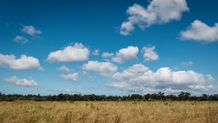 Clouds Over Laguna De Santa Rosa (harminder dhesi photography) Tags: vscocam vsco 16x9 tokina lightroom 70d canon bayarea norcal northbay california sonoma sonomacounty field sky clouds nature hiking outdoors view landscape
