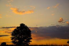 The morning sky. (Photolove2017) Tags: nikondx nikon d3100 photolove2017 tiaphoto trees clouds sky sunrise landscape layers light day nature ontario parkdele canada