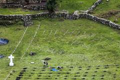 "Ministra Pérez Tello inauguró santuario ecológico en memoria de los mártires de Uchuraccay • <a style=""font-size:0.8em;"" href=""http://www.flickr.com/photos/156664909@N08/35887368635/"" target=""_blank"">View on Flickr</a>"