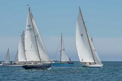 Caper, Lasse and others ready for start (Matchman Devon) Tags: classic channel regatta 2017 start bay caper lasse