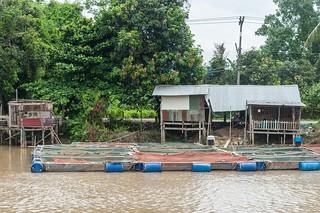 singburi - thailande 11