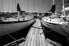 (CanMan90) Tags: boats harbour blackwhite oakbaymarina victoria britishcolumbia oakbay vancouverisland cans2s canon rebelt3i