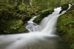 Ruisseau de Lhécou (vallée de Lesponne) (G. Pottier) Tags: valléedelesponne lacbleu lhécou lesponne chiroulet adourdelesponne adour ruisseaudelhécou cascadesdulhécou