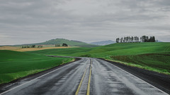 Drive (Pedalhead'71) Tags: palouse washington unitedstates us drive road highway