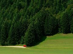 Petite rouge... et grande verte ... (agnès moisuc) Tags: voiture forêt sapins chemin jura rouge vert pré montagne
