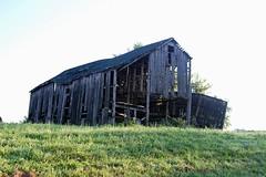 Old Barn (robgividenonyx) Tags: kentucky barns oldbarns abandoned ruraldecay rural
