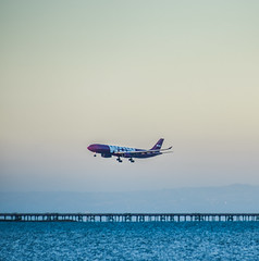 wow arriving (pbo31) Tags: bayarea california color july 2017 summer boury pbo31 sanfranciscointernational sfo millbrae runway airport plane aviation airline sunset sanmateocounty travel airbus a330 wow arrival landing bay blue nikon d810