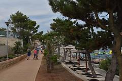 sDSC_5512 (L.Karnas) Tags: summer sommer juli july 2017 croatia hrvatska kroatien istrien istria istra rabac porto albona