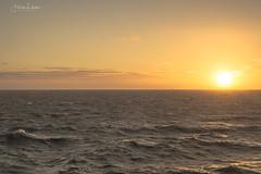 Watching... (Fredrik Lindedal) Tags: ocean outdoor water wave glow sunset sunlight sweden sverige skyline clouds visitsweden coast lindedal sea seascape mindfulness