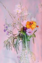Sommarbukett (evisdotter) Tags: sommarbukett flowers blommor boquet macro 2in1 myart gimp textured