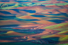 Meander (Hilton Chen) Tags: washington palouse spring colfax garfield unitedstates us