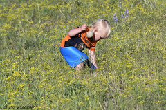 Boy and toy (V. C. Wald) Tags: littleboy pilgrimcreekroad grandtetonnationalpark tamronsp150600f563divcusdg2 bearwatching