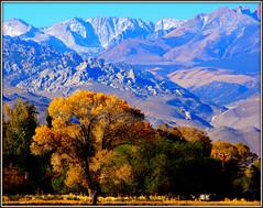 PURPLE MOUNTAIN MAJESTY (Gary Post) Tags: purple mountain majesty