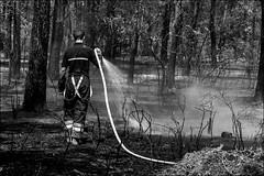 Un mégot=800 ha / One cigarette butt=800 ha (vedebe) Tags: feu provence pompiers eau forêt noiretblanc netb nb bw monochrome nature paysages paysage ecologie travail france saintcannat