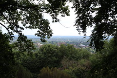 Sevendroog Castle,10 (doojohn701) Tags: castle roof view london uk trees woods forest