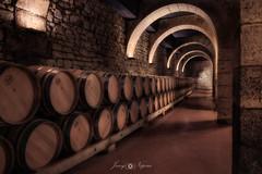 Under protection (Javy Nájera) Tags: espaã±a francoespaã±olas larioja logroã±o viirallyfotogrã¡ficodelrioja bodega vino barrica wine cellar spain barrel españa francoespañolas logroño viirallyfotográficodelrioja