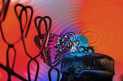 Enrejada (seguicollar) Tags: mariposa insecto valla reja color colorido coloreada rojo azul red bleu imagencreativa photomanipulación art arte artecreativo artedigital virginiaseguí