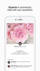 3 (picturethis_plants) Tags: picturethis app