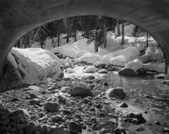Kaweah River, Marble Fork (Blurmageddon) Tags: 4x5 largeformat california sequoianationalpark blackandwhite film analogphotography epsonv700 landscape legacyecopro xtol mod54 ilford delta100 snow river
