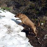 Bella at the falls thumbnail