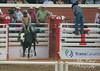 DSC02097 (♥ MissChief Photography ♥) Tags: calgarystampede2017 calgary canada horses bull cowboy bullfighters