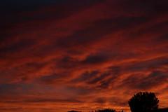 Sunset July 26 2017 #44 (Az Skies Photography) Tags: sun set sunset dusk twilight nightfall cloud clouds sky skyline skyscape skycandy skyfire red orange yellow gold golden salmon black canon eos 80d canoneos80d eos80d rio rico arizona az riorico rioricoaz arizonasky arizonaskyline arizonaskyscape arizonaskycandy arizonaskyfire july 26 2017 july262017 72617 7262017