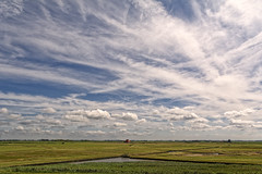 Complexity Of Clouds (Alfred Grupstra) Tags: agriculture nature ruralscene farm field landscape summer outdoors sky land crop scenics cloudsky nonurbanscene landscaped meadow season growth blue harvesting